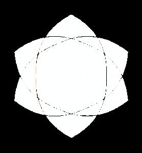 logo blanc csc